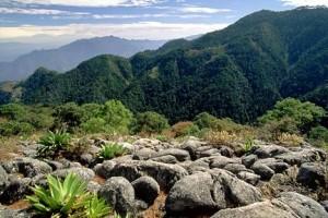 Parco Nazionale del Messico