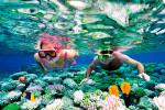 Snorkel-in-Cancun