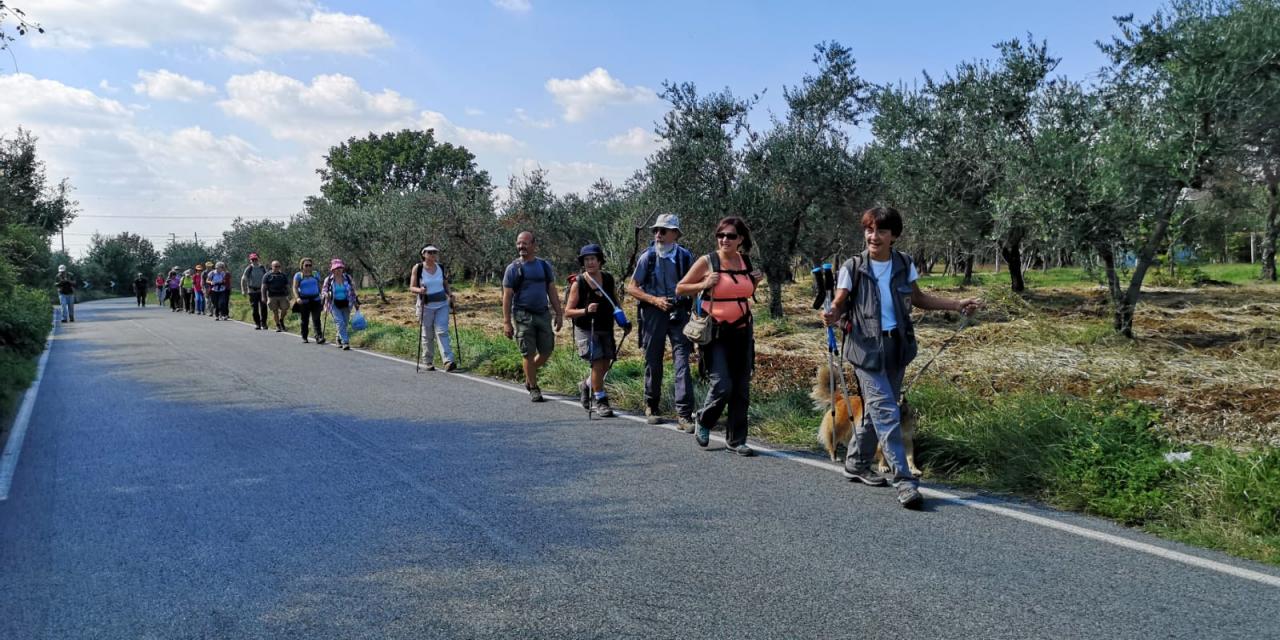 Una delle camminate organizzate dall'associazione Sentiero Verde