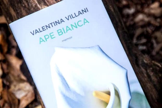 Ape Bianca, di Valentina Villani