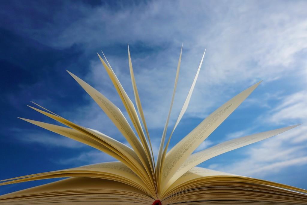 book-5178205_1920