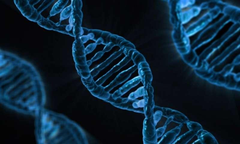 9-gene