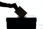 Un Anno di Volontà: politica